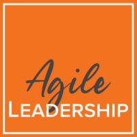 Agile leaderhsip course using the DiSC Agile EQ Profile